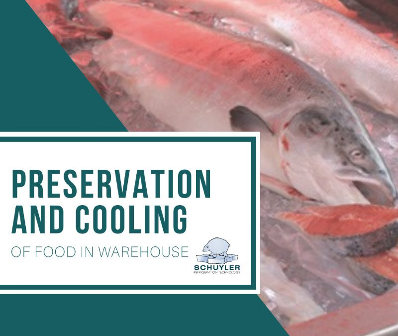Preservation and Cooling of Food in Warehouse