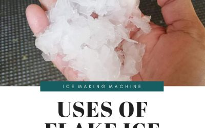 What are the uses of Flake Ice?